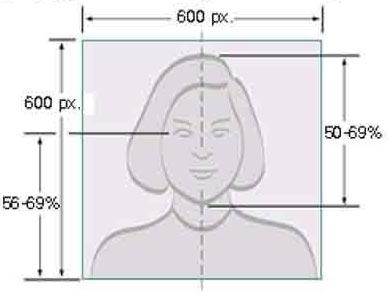 electronnoe-foto-dlia-vizy-v-ssha Полезная информация